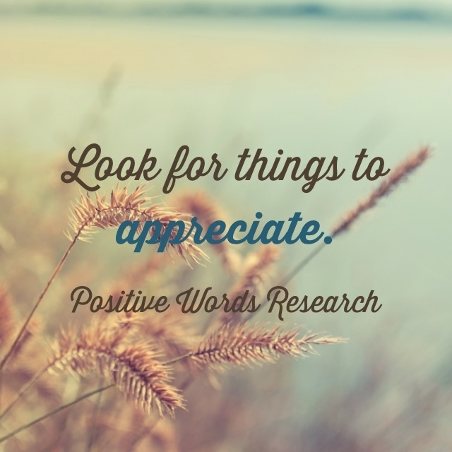 Look for things to appreciate