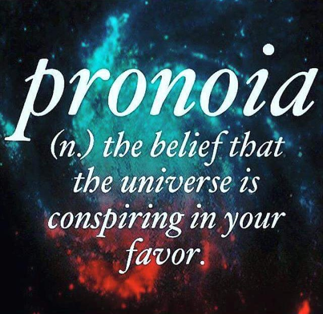 Image result for pronoia