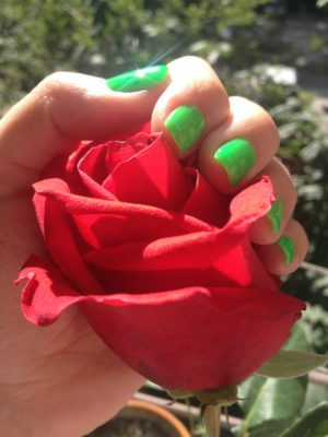 Red rose Green Nails