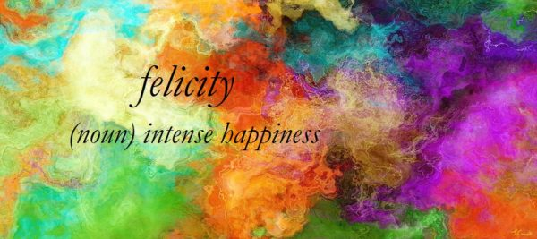Felicity ~ positive word meaning